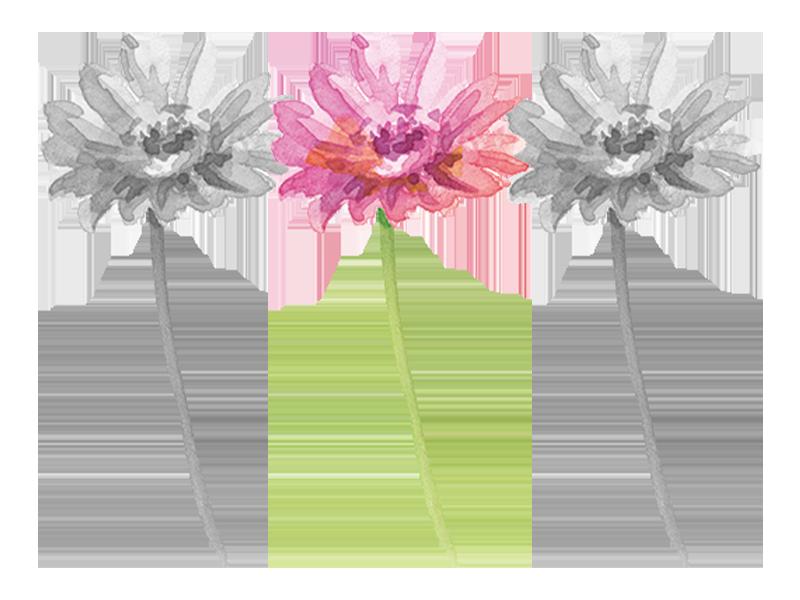 一本だけ色付きの花4本